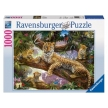 Ravensburger Leopard Family Puzzle 1000 pc