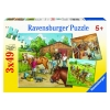 Ravensburger A Day with Horses Puzzle 3x49pc